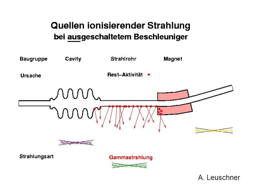 Accelerators Synchrotron radiation (Röntgen) Beam Losses (e-,p-shower) Secondary radiation (, neutrons) Störstrahler Clystrons (Röntgen) Cavities (Rö, Gamma) Radioactive materials Radioactive sources ( ) Activated material ( Radiation Sources DESY