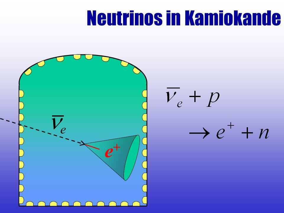 Neutrinos in Kamiokande e e+e+