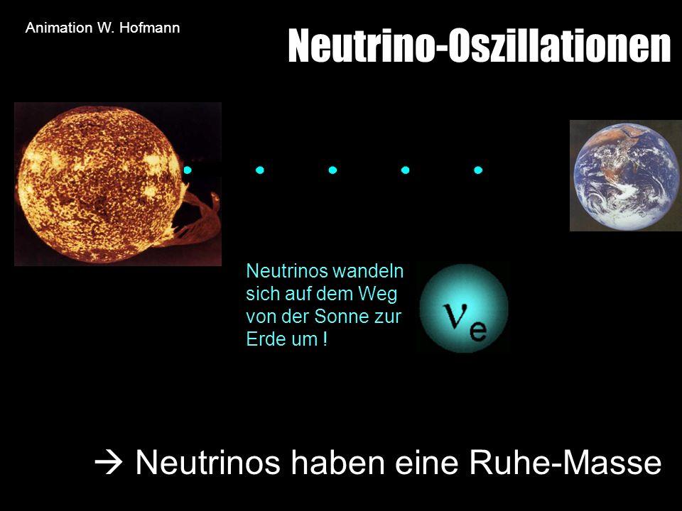 Neutrino-Oszillationen Neutrinos wandeln sich auf dem Weg von der Sonne zur Erde um ! Neutrinos haben eine Ruhe-Masse Animation W. Hofmann