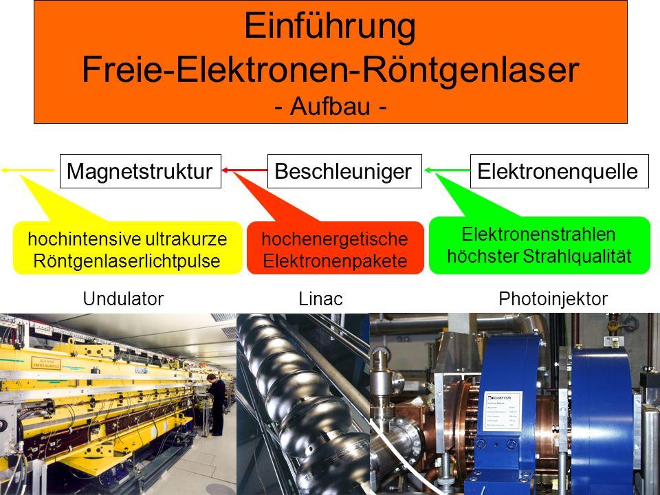 Einführung Freie-Elektronen-Röntgenlaser - Aufbau - ElektronenquelleBeschleunigerMagnetstruktur Undulator Linac Photoinjektor hochenergetische Elektro