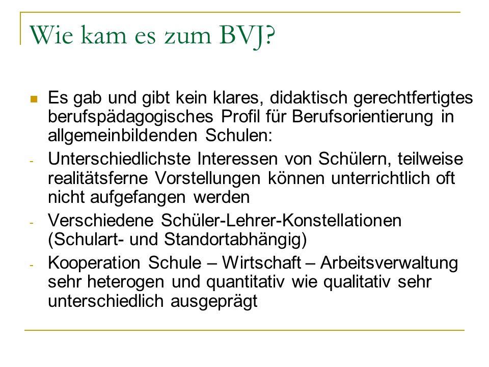 Organisationsformen des BVJ Kann in Berufsschulen, aber auch in Förderzentren durchgeführt werden (z.B.