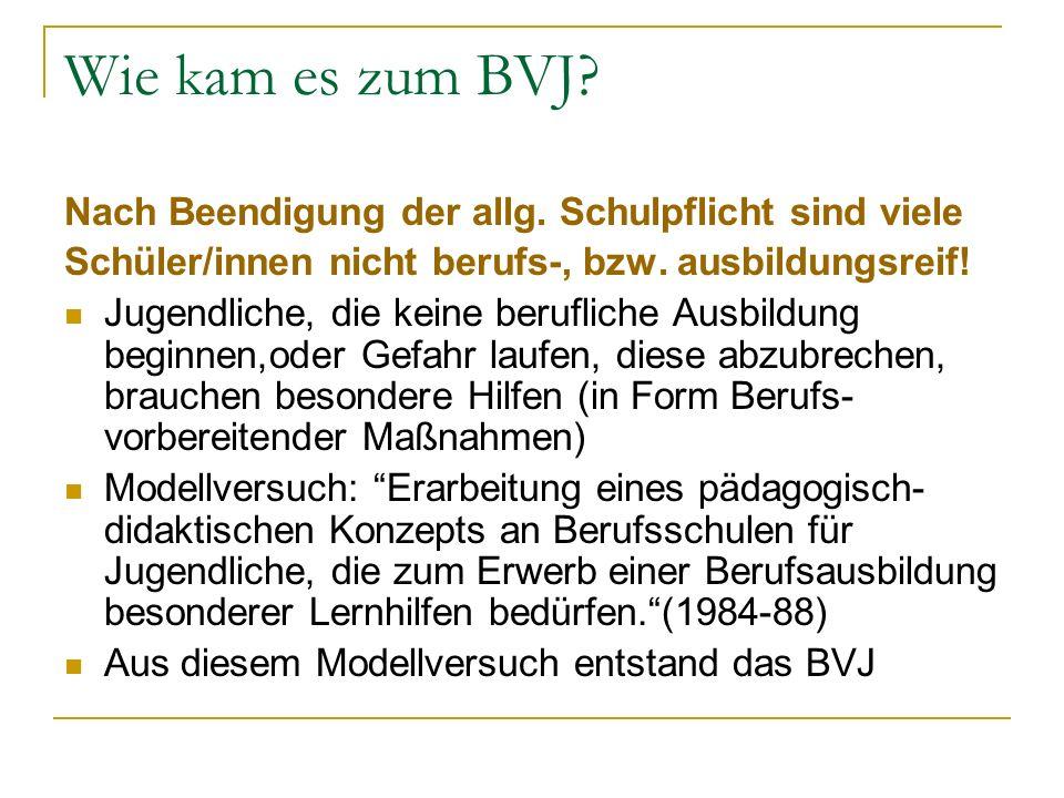 Definition des BVJ: Berufsvorbereitungsjahr - für leistungsschwächere Schüler, die nicht imstande sind, nach der Beendigung oder dem Abbruch der Schule aufgrund der wirtschaftlichen Lage einen Ausbildungsplatz zu finden bzw.