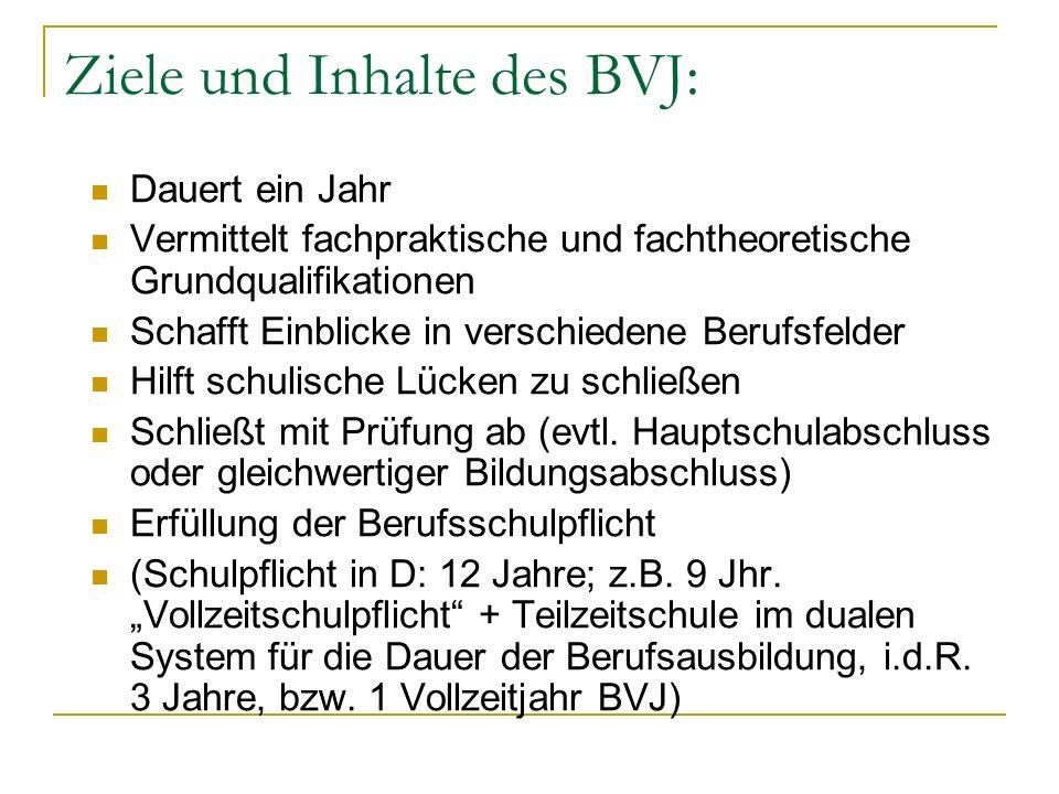 Beispiele aus der Praxis (dbs WÜ) BVJ-Körperpflege -Berufsbild Frisör -Praktikumstag einmal pro Woche -Fachpraktischer und fachtheoretischer Unterricht