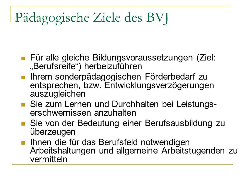 Zielvorstellungen der Schüler fürs BVJ Durch regelmäßige Anwesenheit die 10-jährige Schulpflicht erfüllen, mit Abgangszeugnis Arbeitsverhältnis (Job) eingehen Im BVJ den Hauptschulabschluss erreichen (bes.