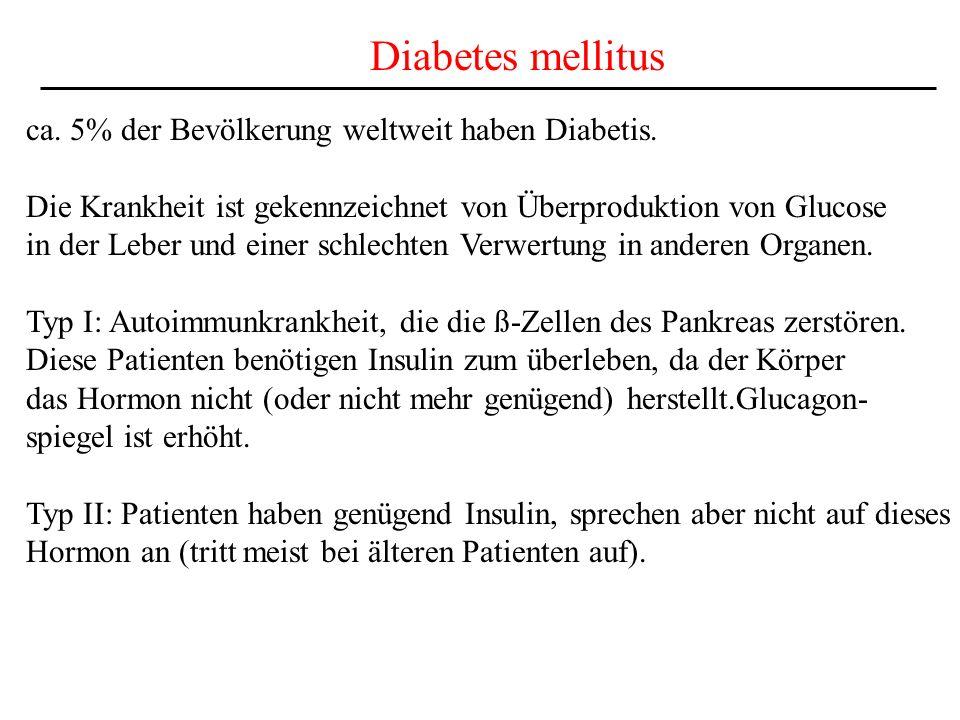 Diabetes mellitus ca. 5% der Bevölkerung weltweit haben Diabetis. Die Krankheit ist gekennzeichnet von Überproduktion von Glucose in der Leber und ein