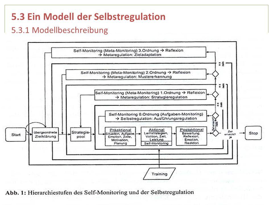 5.3 Ein Modell der Selbstregulation 5.3.1 Modellbeschreibung