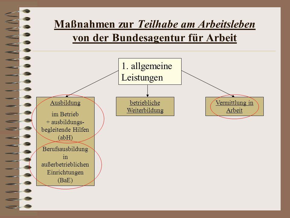 Maßnahmen zur Teilhabe am Arbeitsleben von der Bundesagentur für Arbeit 1. allgemeine Leistungen Ausbildung im Betrieb + ausbildungs- begleitende Hilf