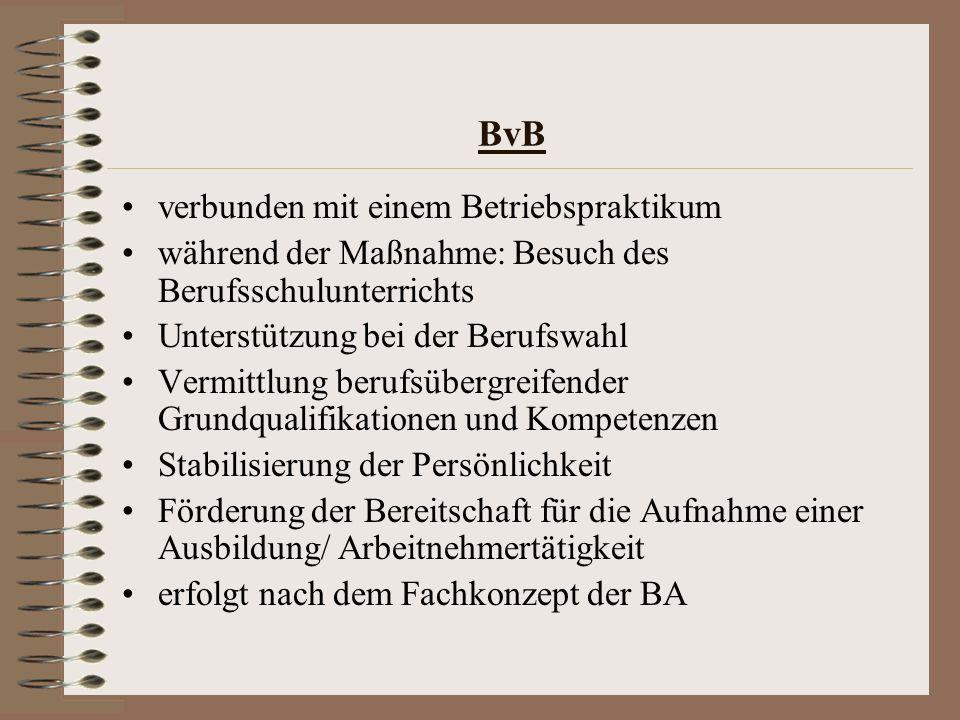 BvB verbunden mit einem Betriebspraktikum während der Maßnahme: Besuch des Berufsschulunterrichts Unterstützung bei der Berufswahl Vermittlung berufsü