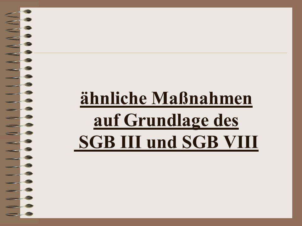 ähnliche Maßnahmen auf Grundlage des SGB III und SGB VIII