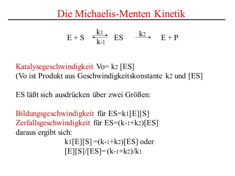 E + S ES E + P k1k1 k2k2 k -1 Die Michaelis-Menten Kinetik Katalysegeschwindigkeit Vo= k 2 [ES] (Vo ist Produkt aus Geschwindigkeitskonstante k 2 und [ES] ES läßt sich ausdrücken über zwei Größen: Bildungsgeschwindigkeit für ES=k 1 [E][S] Zerfallsgeschwindigkeit für ES=(k- 1 +k 2 )[ES] daraus ergibt sich: k 1 [E][S] =(k- 1 +k 2 )[ES] oder [E][S]/[ES]= (k- 1 +k 2 )/k 1
