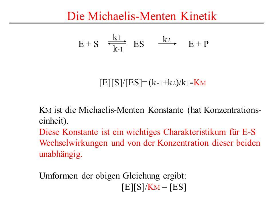 E + S ES E + P k1k1 k2k2 k -1 Die Michaelis-Menten Kinetik [E][S]/[ES]= (k- 1 +k 2 )/k 1= K M K M ist die Michaelis-Menten Konstante (hat Konzentrations- einheit).