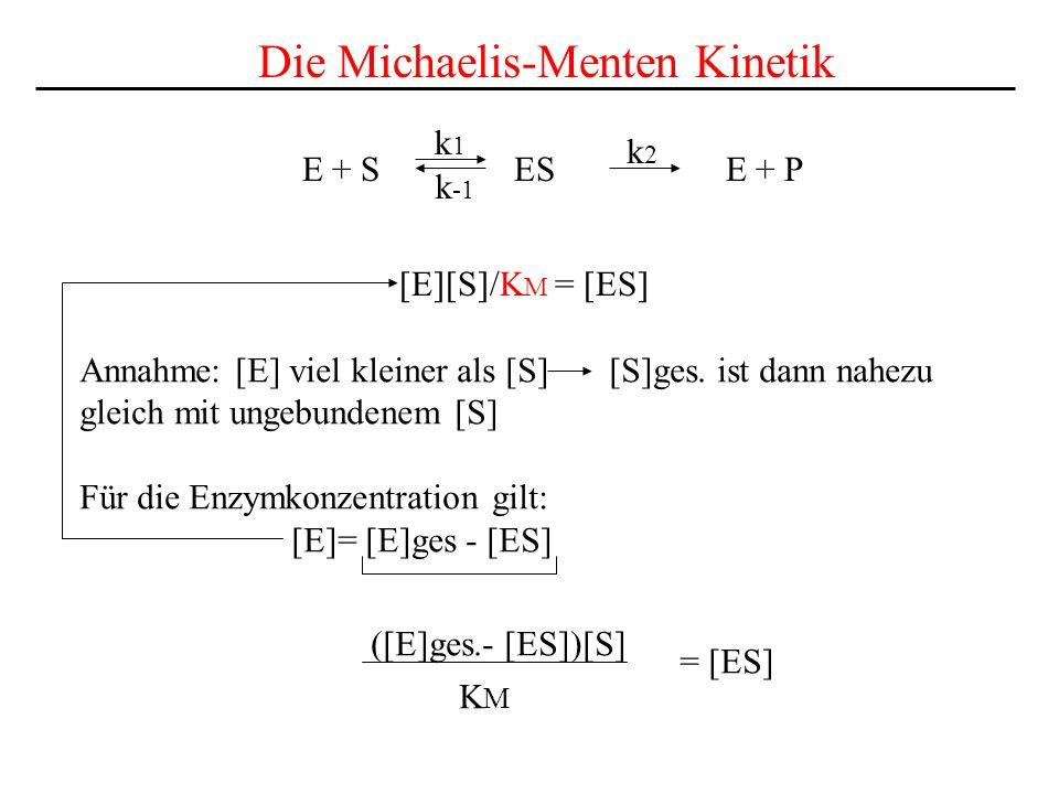 E + S ES E + P k1k1 k2k2 k -1 Die Michaelis-Menten Kinetik [E][S]/K M = [ES] Annahme: [E] viel kleiner als [S] [S]ges.