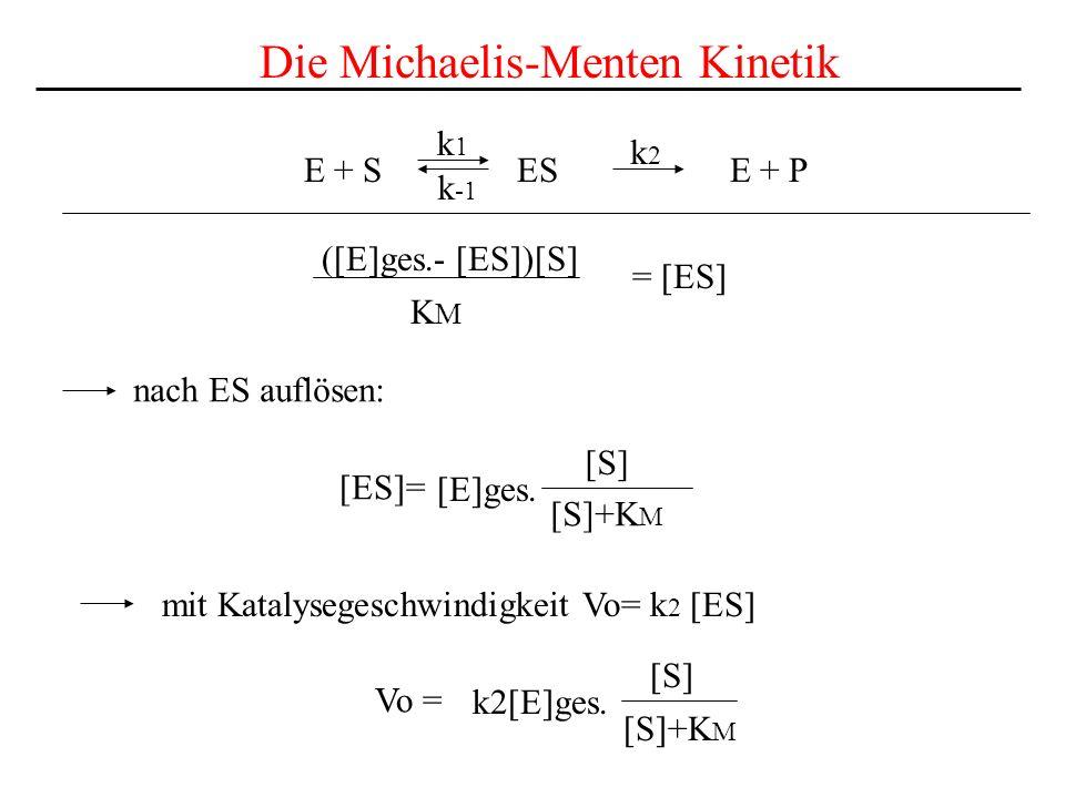 E + S ES E + P k1k1 k2k2 k -1 Die Michaelis-Menten Kinetik ([E]ges.- [ES])[S] = [ES] KMKM nach ES auflösen: [ES]= [E]ges.