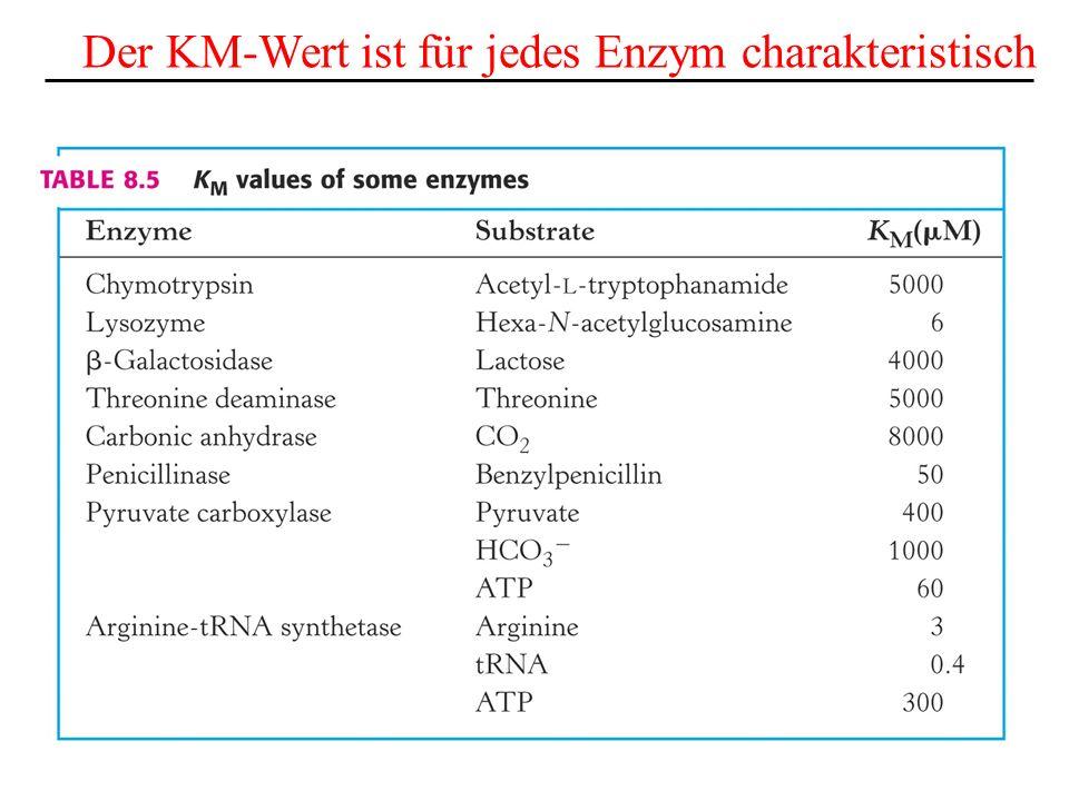 Der KM-Wert ist für jedes Enzym charakteristisch