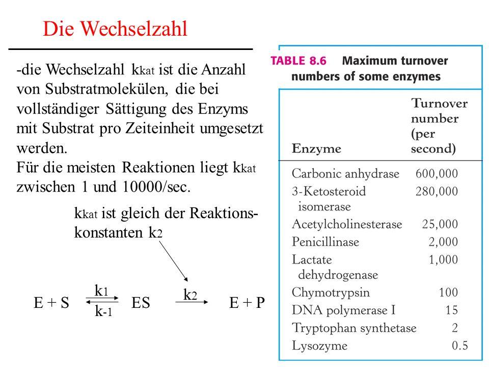 Die Wechselzahl -die Wechselzahl k kat ist die Anzahl von Substratmolekülen, die bei vollständiger Sättigung des Enzyms mit Substrat pro Zeiteinheit umgesetzt werden.