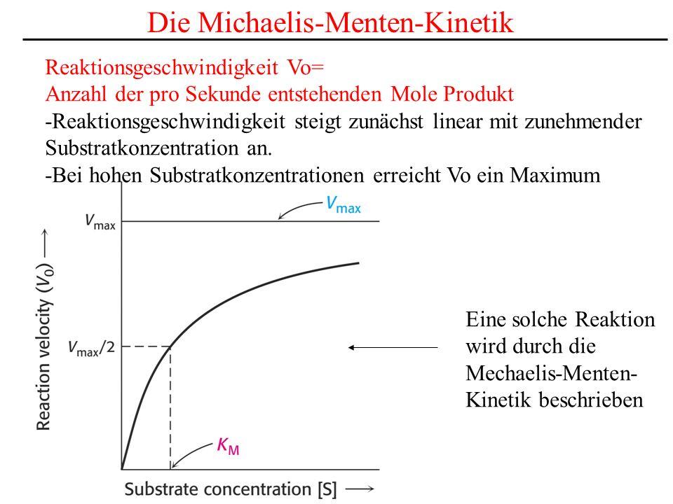 Die Michaelis-Menten-Kinetik Reaktionsgeschwindigkeit Vo= Anzahl der pro Sekunde entstehenden Mole Produkt -Reaktionsgeschwindigkeit steigt zunächst linear mit zunehmender Substratkonzentration an.