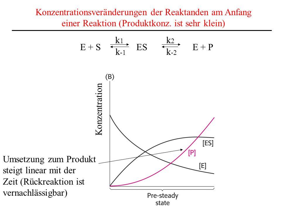 Konzentrationsveränderungen der Reaktanden am Anfang einer Reaktion (Produktkonz.
