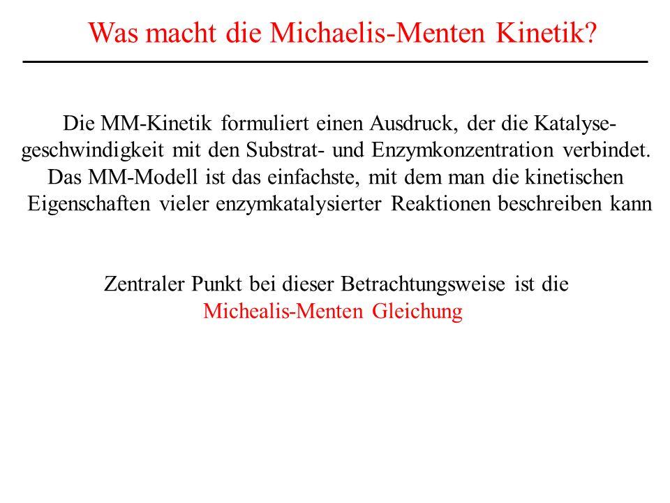 Was macht die Michaelis-Menten Kinetik.