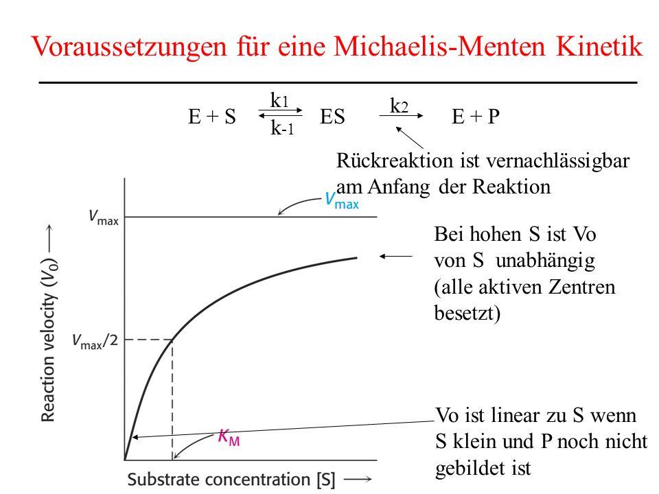 Voraussetzungen für eine Michaelis-Menten Kinetik E + S ES E + P k1k1 k2k2 k -1 Vo ist linear zu S wenn S klein und P noch nicht gebildet ist Bei hohen S ist Vo von S unabhängig (alle aktiven Zentren besetzt) Rückreaktion ist vernachlässigbar am Anfang der Reaktion