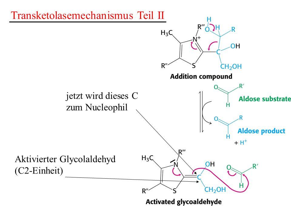 Transketolasemechanismus Teil II jetzt wird dieses C zum Nucleophil Aktivierter Glycolaldehyd (C2-Einheit)