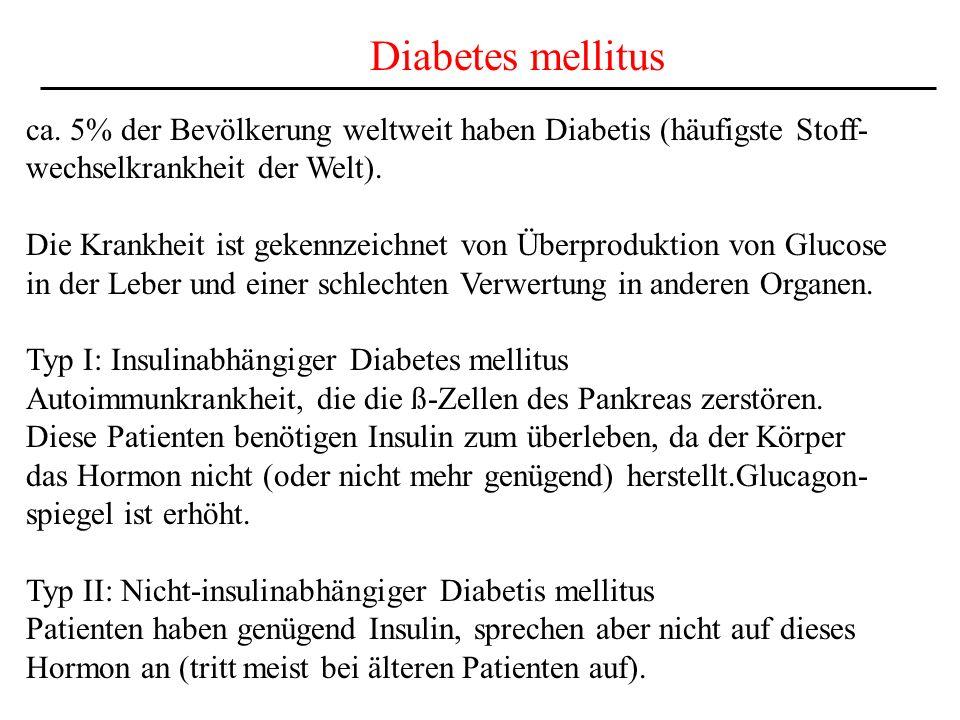 Diabetes mellitus ca. 5% der Bevölkerung weltweit haben Diabetis (häufigste Stoff- wechselkrankheit der Welt). Die Krankheit ist gekennzeichnet von Üb