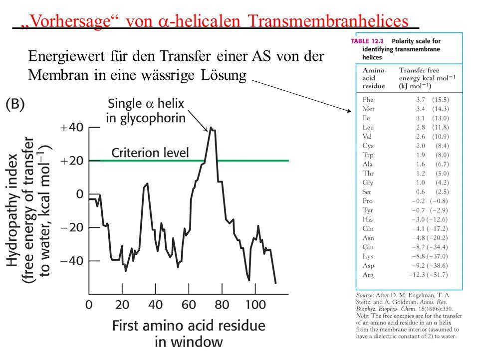 Vorhersage von -helicalen Transmembranhelices Energiewert für den Transfer einer AS von der Membran in eine wässrige Lösung