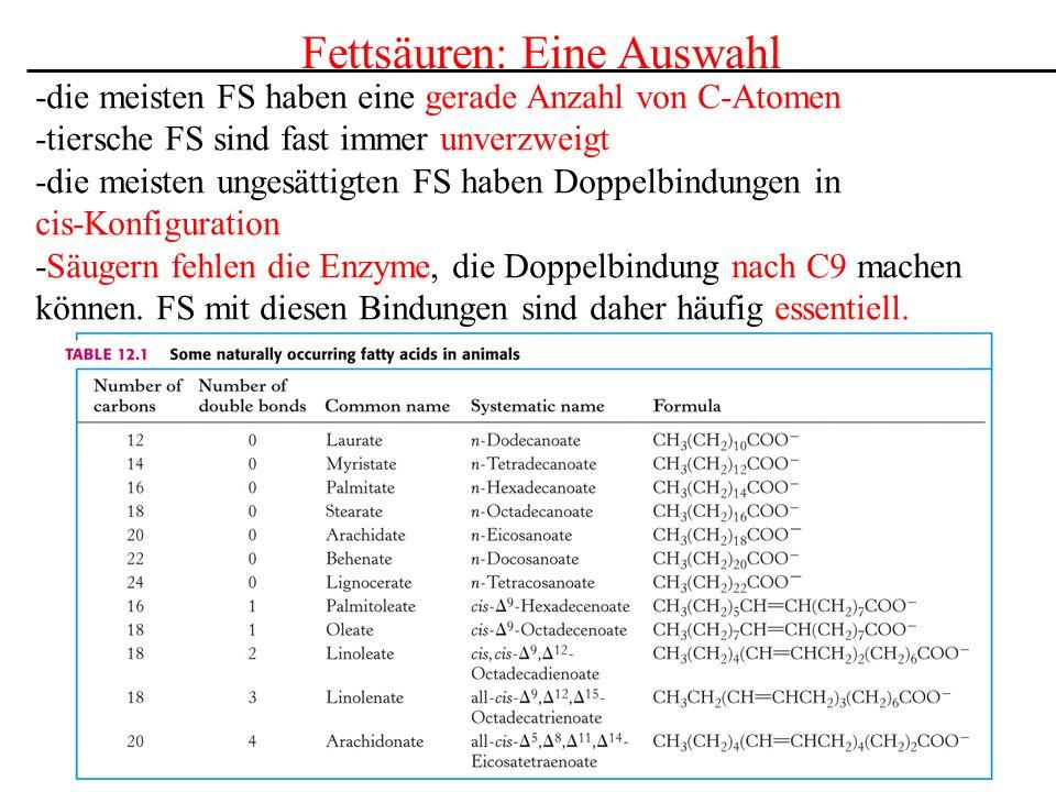 Fettsäuren: Eine Auswahl -die meisten FS haben eine gerade Anzahl von C-Atomen -tiersche FS sind fast immer unverzweigt -die meisten ungesättigten FS