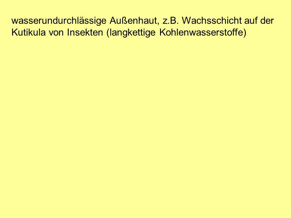 wasserundurchlässige Außenhaut, z.B.