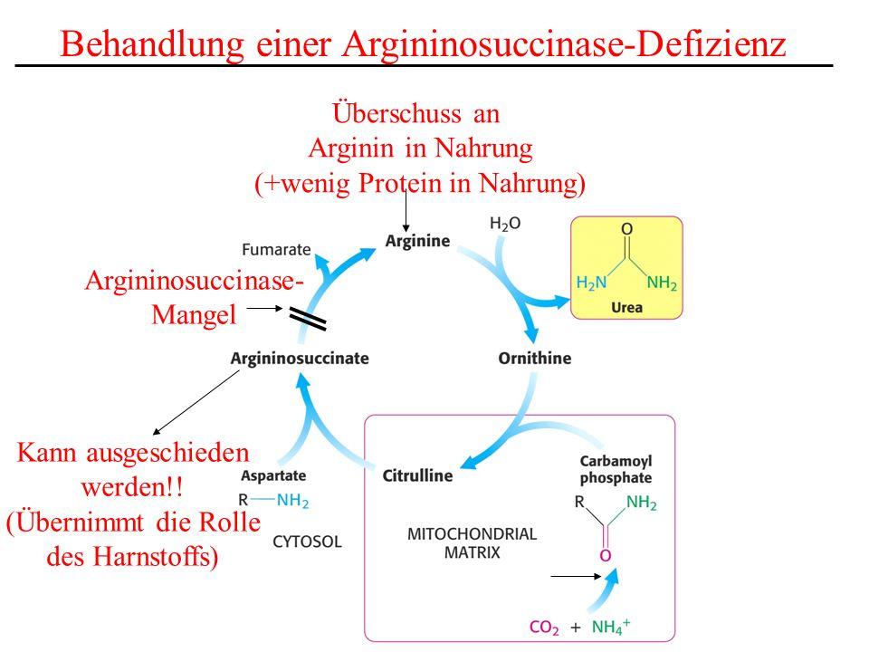 Argininosuccinase- Mangel Überschuss an Arginin in Nahrung (+wenig Protein in Nahrung) Behandlung einer Argininosuccinase-Defizienz Kann ausgeschieden