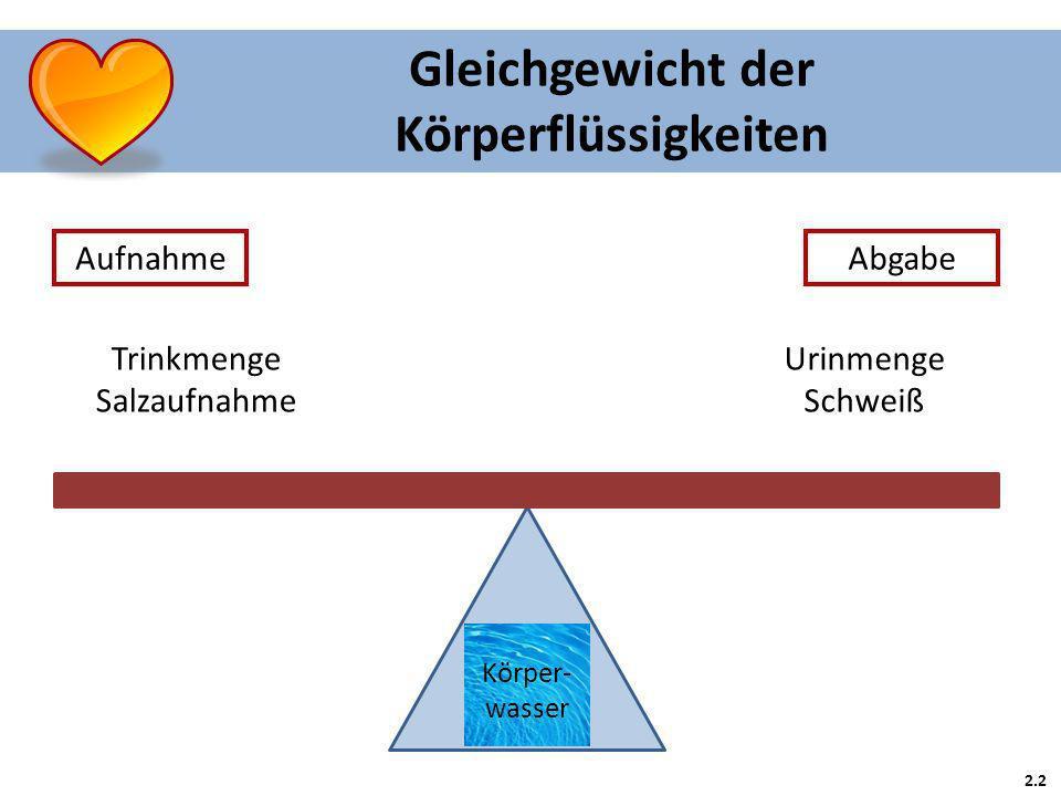 2.2 Gleichgewicht der Körperflüssigkeiten Aufnahme Körper- wasser Trinkmenge Salzaufnahme Abgabe Urinmenge Schweiß