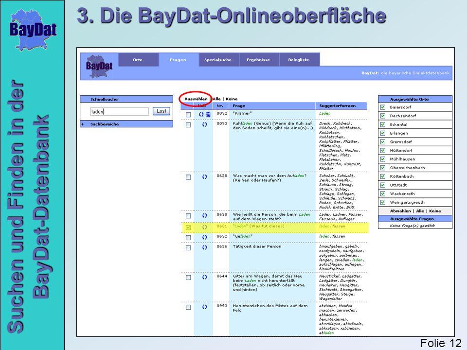 Suchen und Finden in der BayDat-Datenbank 3. Die BayDat-Onlineoberfläche Folie 12