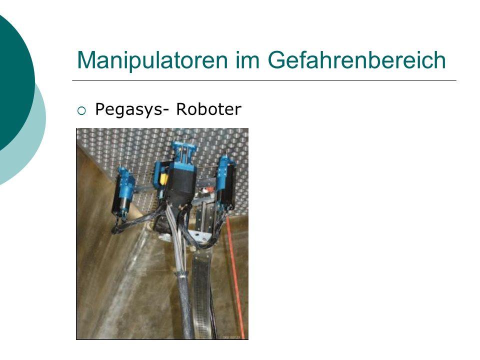 Manipulatoren im Gefahrenbereich Pegasys- Roboter