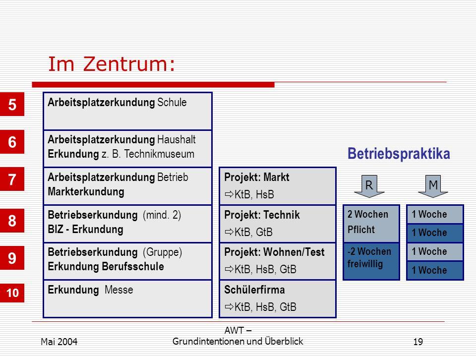 19 AWT – Grundintentionen und ÜberblickMai 2004 Im Zentrum: Arbeitsplatzerkundung Schule Arbeitsplatzerkundung Haushalt Erkundung z.