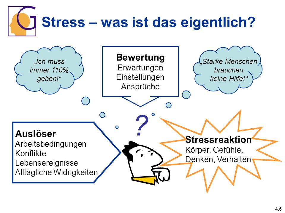 Stress – was ist das eigentlich? Bewertung Erwartungen Einstellungen Ansprüche Starke Menschen brauchen keine Hilfe! Ich muss immer 110% geben! Auslös