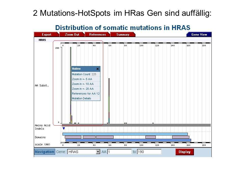 2 Mutations-HotSpots im HRas Gen sind auffällig: