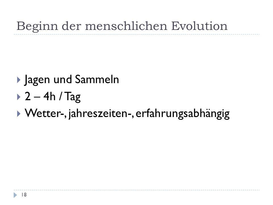 Beginn der menschlichen Evolution 18 Jagen und Sammeln 2 – 4h / Tag Wetter-, jahreszeiten-, erfahrungsabhängig