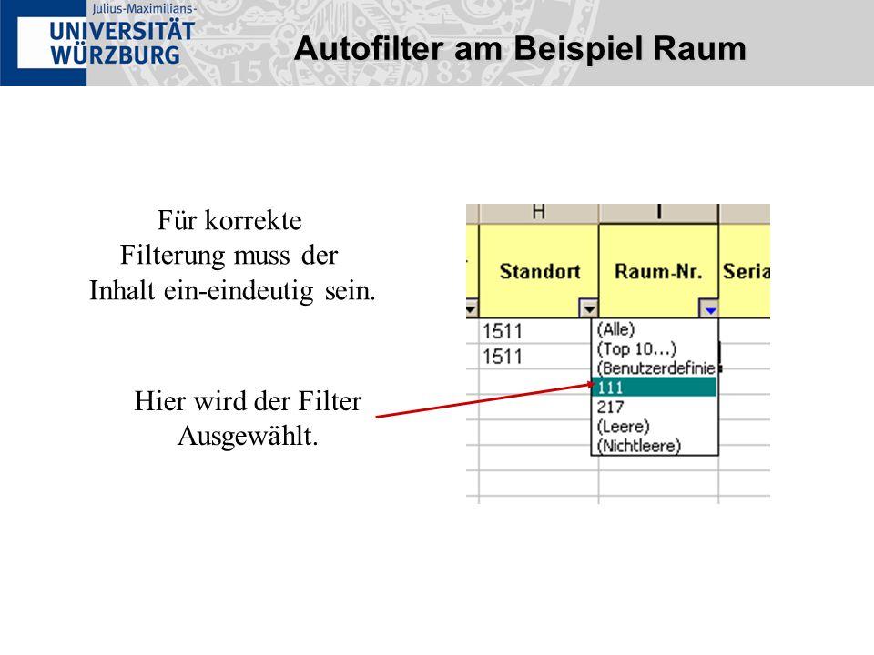 Autofilter am Beispiel Raum Für korrekte Filterung muss der Inhalt ein-eindeutig sein. Hier wird der Filter Ausgewählt.