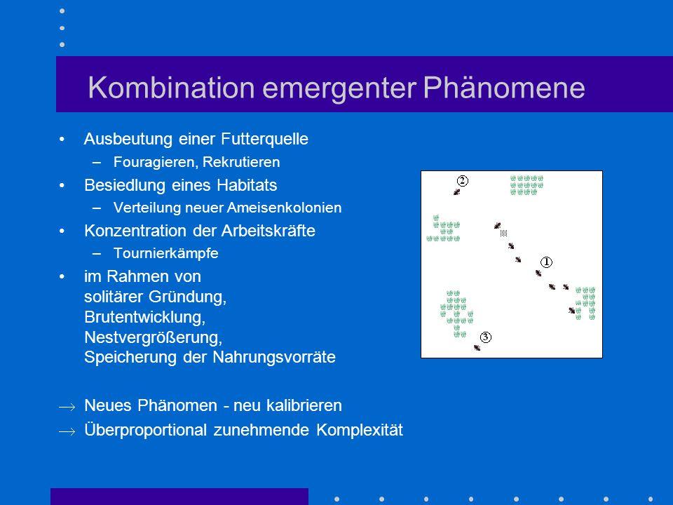 Kombination emergenter Phänomene Ausbeutung einer Futterquelle –Fouragieren, Rekrutieren Besiedlung eines Habitats –Verteilung neuer Ameisenkolonien K