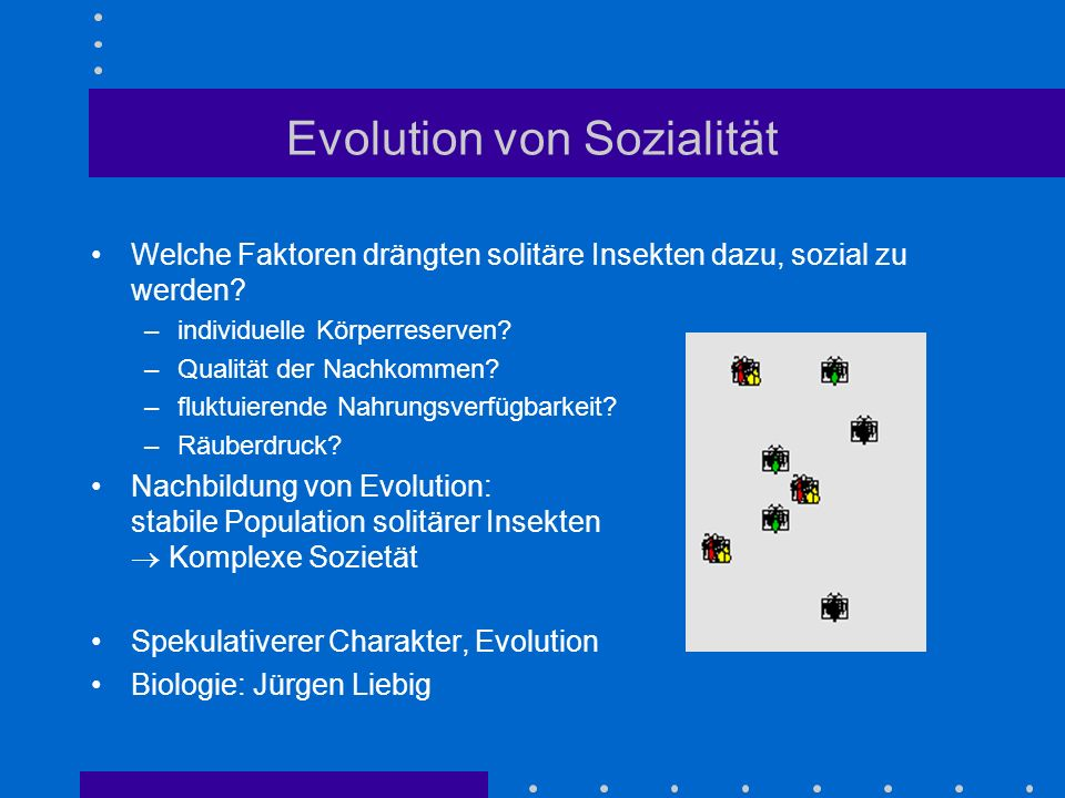 Evolution von Sozialität Welche Faktoren drängten solitäre Insekten dazu, sozial zu werden? –individuelle Körperreserven? –Qualität der Nachkommen? –f