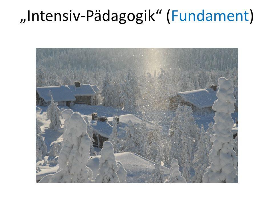 Intensiv-Pädagogik (Fundament)