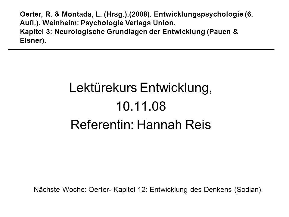 Lektürekurs Entwicklung, 10.11.08 Referentin: Hannah Reis Oerter, R. & Montada, L. (Hrsg.).(2008). Entwicklungspsychologie (6. Aufl.). Weinheim: Psych
