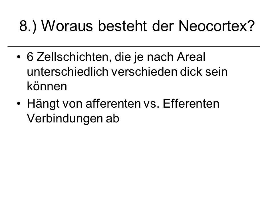 8.) Woraus besteht der Neocortex? 6 Zellschichten, die je nach Areal unterschiedlich verschieden dick sein können Hängt von afferenten vs. Efferenten