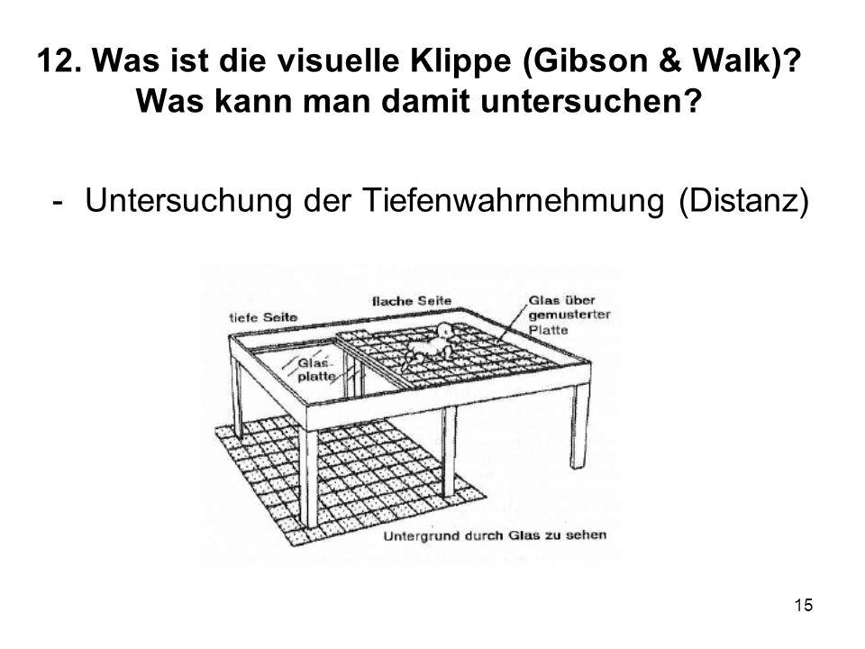 15 12. Was ist die visuelle Klippe (Gibson & Walk)? Was kann man damit untersuchen? -Untersuchung der Tiefenwahrnehmung (Distanz)