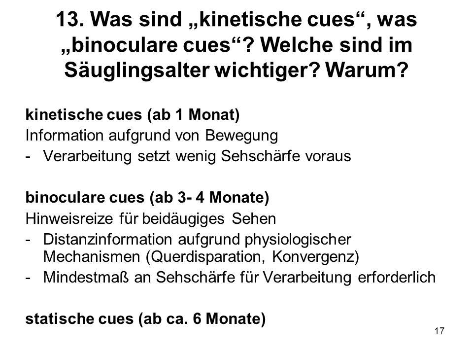 17 13. Was sind kinetische cues, was binoculare cues? Welche sind im Säuglingsalter wichtiger? Warum? kinetische cues (ab 1 Monat) Information aufgrun