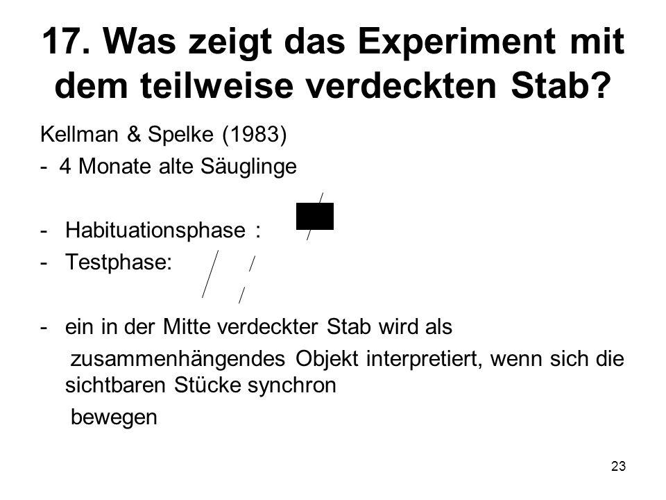 23 17. Was zeigt das Experiment mit dem teilweise verdeckten Stab? Kellman & Spelke (1983) - 4 Monate alte Säuglinge -Habituationsphase : -Testphase: