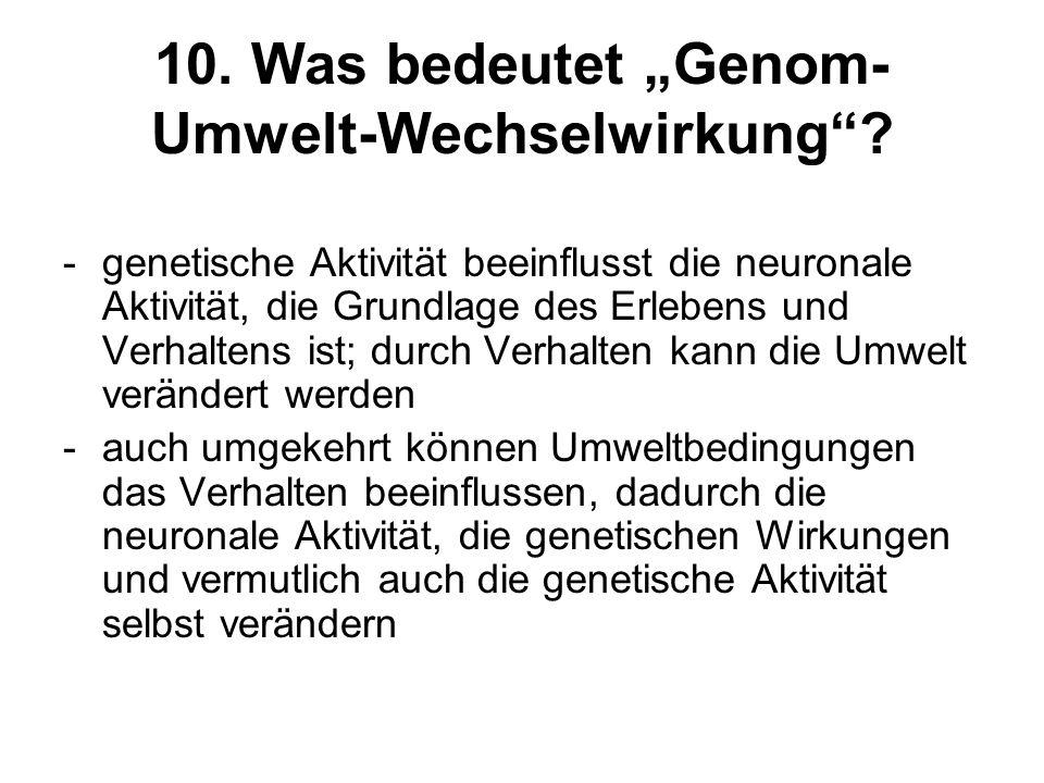 10. Was bedeutet Genom- Umwelt-Wechselwirkung? -genetische Aktivität beeinflusst die neuronale Aktivität, die Grundlage des Erlebens und Verhaltens is