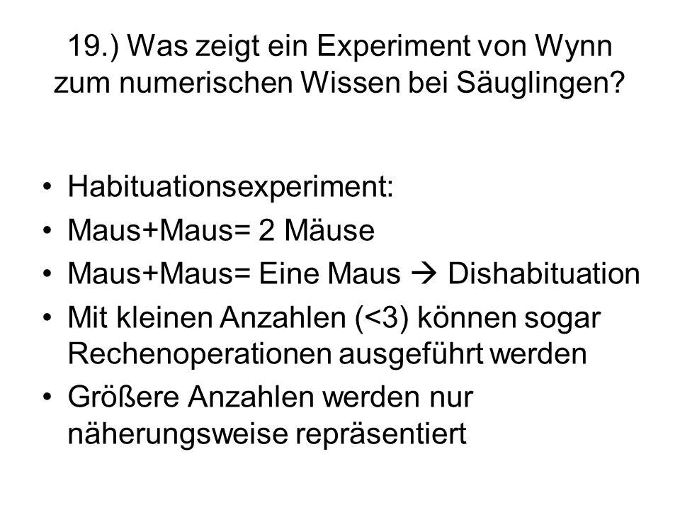 19.) Was zeigt ein Experiment von Wynn zum numerischen Wissen bei Säuglingen? Habituationsexperiment: Maus+Maus= 2 Mäuse Maus+Maus= Eine Maus Dishabit