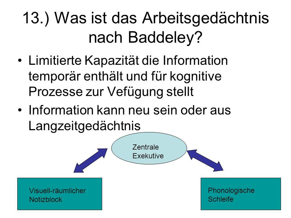 13.) Was ist das Arbeitsgedächtnis nach Baddeley? Limitierte Kapazität die Information temporär enthält und für kognitive Prozesse zur Vefügung stellt