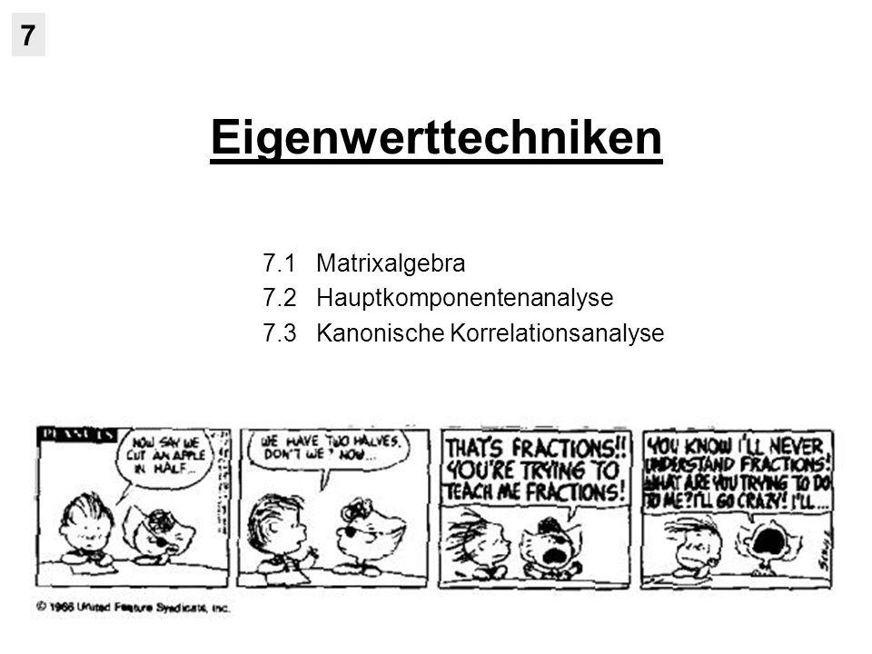 Eigenwerttechniken 7 7.1 Matrixalgebra 7.2 Hauptkomponentenanalyse 7.3 Kanonische Korrelationsanalyse