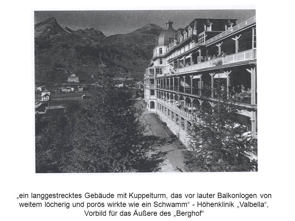 ein langgestrecktes Gebäude mit Kuppelturm, das vor lauter Balkonlogen von weitem löcherig und porös wirkte wie ein Schwamm - Höhenklinik Valbella, Vo
